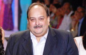 mehul chauksi law insider in