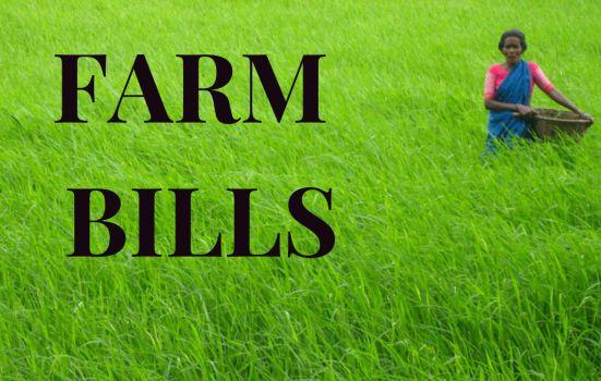 FARM BILLS LAW INSIDER IN