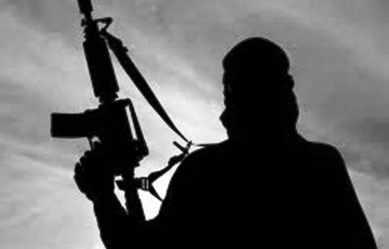 TERROR TERRORIST LAW INSIDER IN