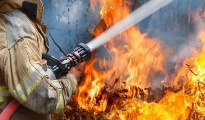 Fire Law Insider