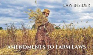 Farmer Farming plants wheat in open farm blue sky woman farmer in brown suit