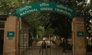 NGT Gate entrance tree campus in