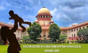 PLEA FOR CUSTODY OF A CHILD FROM EGYPTIAN FATHER FILED IN SUPREME COURT
