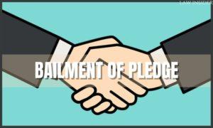 bailment & pledge - LAW INSIDER
