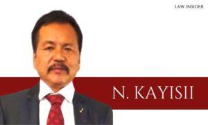 N. KAYISII - law insider