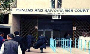 Punjab & Haryana HC Habaes Corpus - law insider